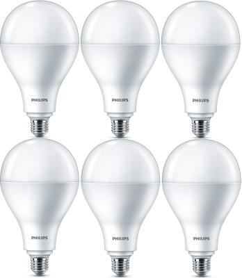 Philips LED Leuchtmittel 6 Stück E27 Globeform 3450lm Warmweiß 30W